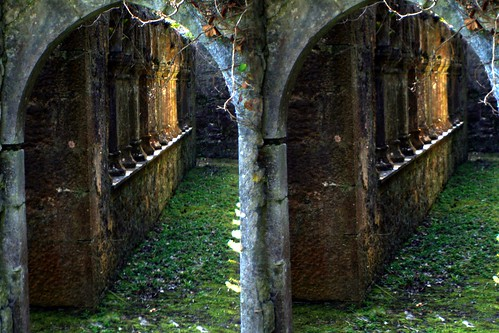 ireland church stone stereoscopic stereogram stereophoto stereophotography 3d ruins gothic columns medieval stereo stereograph parallel friary adare loreo gudenius
