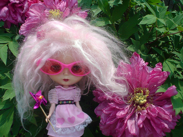 Miss Candy Floss in the garden | Flickr - Photo Sharing!