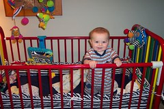 adorable toogs standing in his crib!