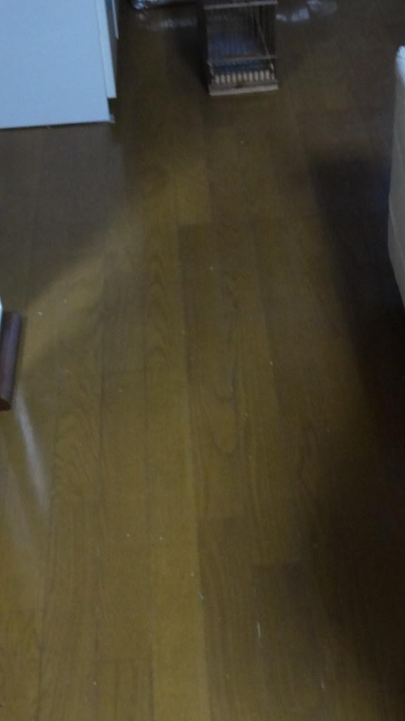 スチームモップかけ過ぎですぐワックスのツヤが無くなるのが難点だけど簡単にウンチだらけの床が綺麗になります