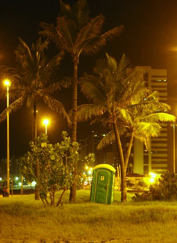 brazil brasil night palmtrees fortaleza leaning beiramar publictoilet views200 photoassociationgame