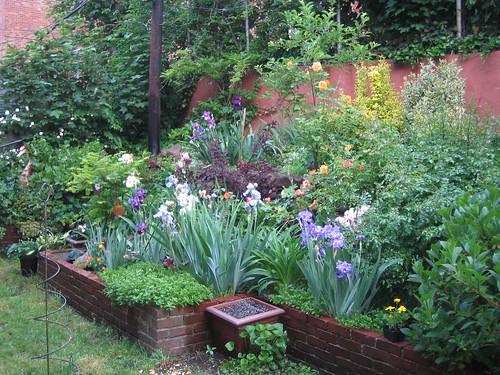 Memorial Day Flower Garden 05/07
