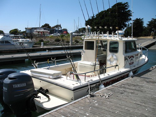 522643062 for Sf bay halibut fishing