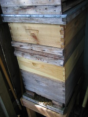 drawer, wood, wood stain, design, beehive,