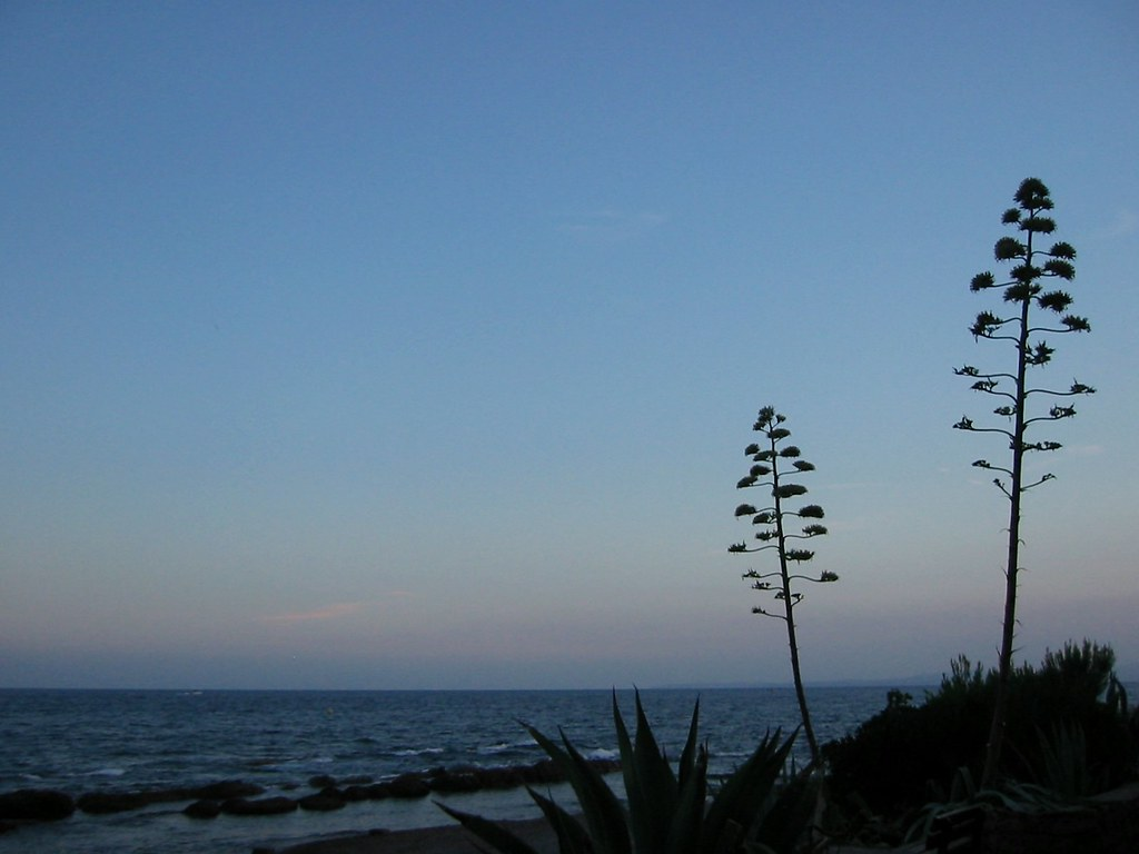 Nightfall on the Mediterranian