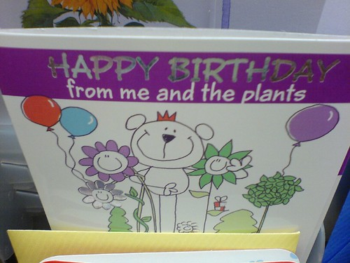 42665893 75b17796bb Stupid birthday card.
