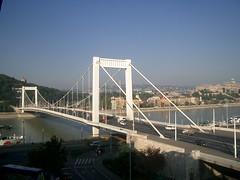 Elizabeth Bridge--Day