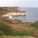 Flamborough Head, looking north by Sue Jackson