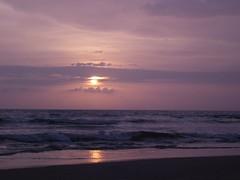 Sunset - purple