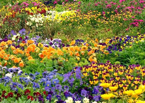 Occhi, i colori della primavera