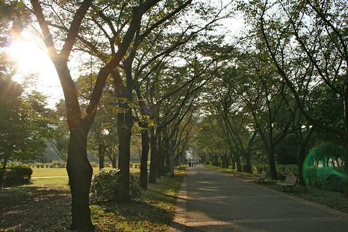 Tatsumi Seaside Park