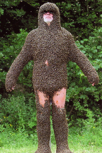 Bee Beard 2