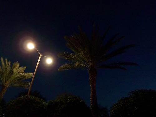 Bonita Springs Florida Monday Mortgage Report 02 09 2009
