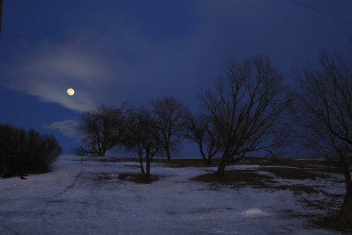 trees moon ontario canada evening interestingness dusk hill fullmoon explore kingston forthenryhill i500feb82009436