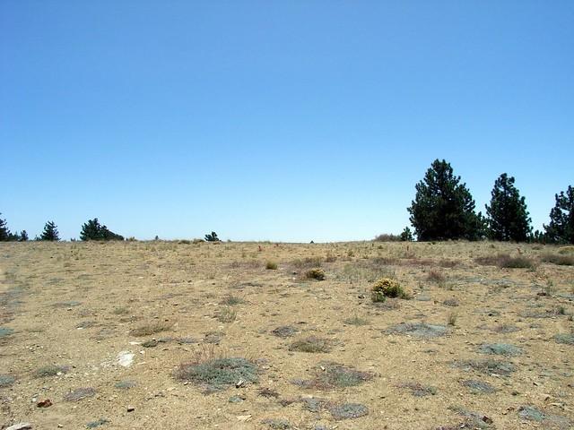 Mount Gleason 013