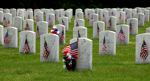 Memorial Day by Alida's Photos