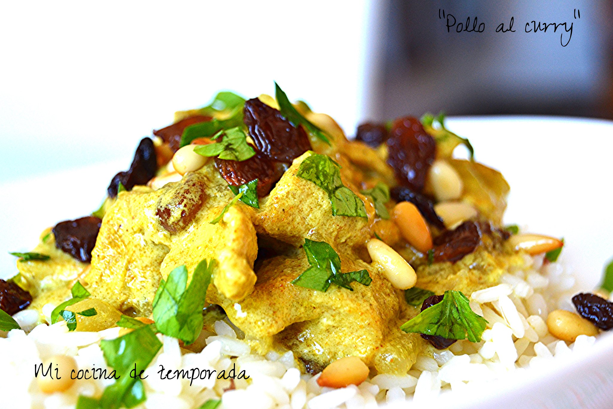 Pollo al curry 022