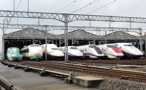 JR_East_Shinkansen_lineup_at_Niigata_Depot_201210