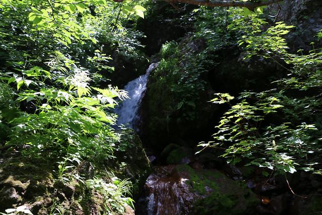 2014-07-22_02638_北海道登山旅行.jpg