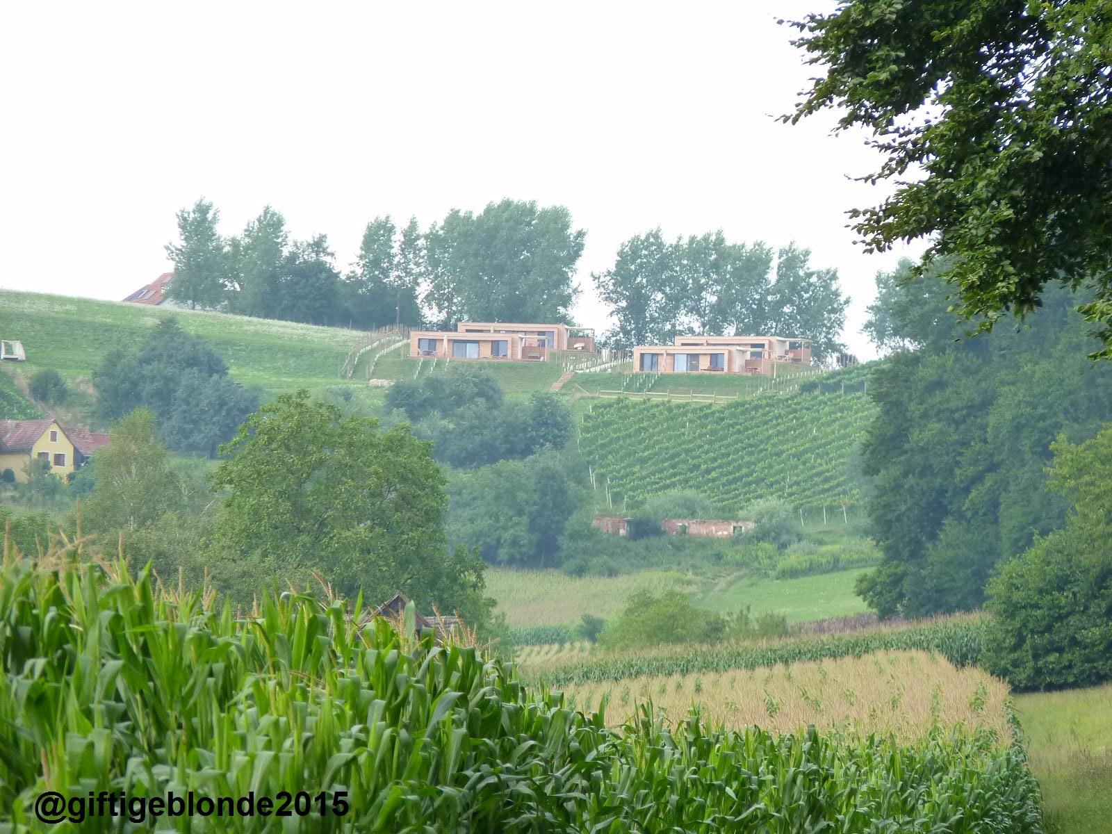 Blick auf das Weingarten Resort Unterlamm