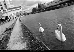 Paris, quartier de la Géode (noir & blanc)