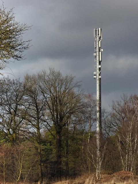 Großmoorer Funkturm im Seitenlicht.