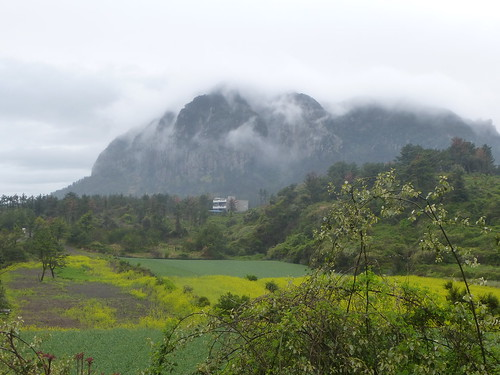 Co-Jejudo-Seogwipo-Sentier Olle 10-Sanbangsan (17)