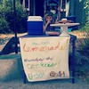Cutest lemonade merchant I've ever seen! She planned this almost all herself, with just a little guidance from me. If you're in our neighborhood you should come get a cup and a cookie! #lemonadestand #selfemployeed  #dogdaysofsummer #idontevenknowwhatthat