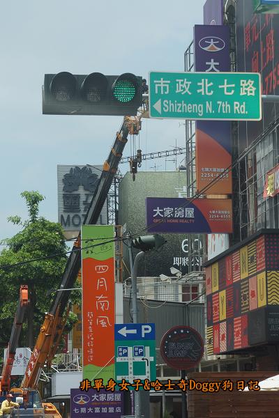 台中秋紅谷26