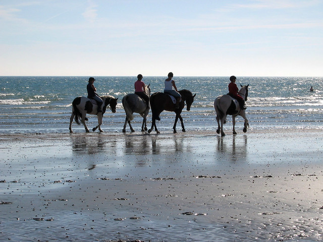Horses on the beach at East Wittering