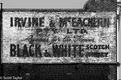 Black & White Scotch
