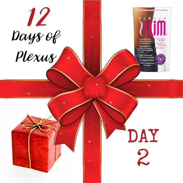 Day2Plexus