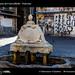 D8B_2188_bis_Centro_storico_Palermo