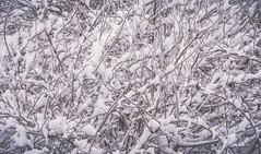 hiver 17 winter