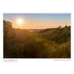 Summer Evening, Walter's Creek Valley