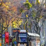 SL Bratislava - Tram #7119 on Rt 2 at Žilinská