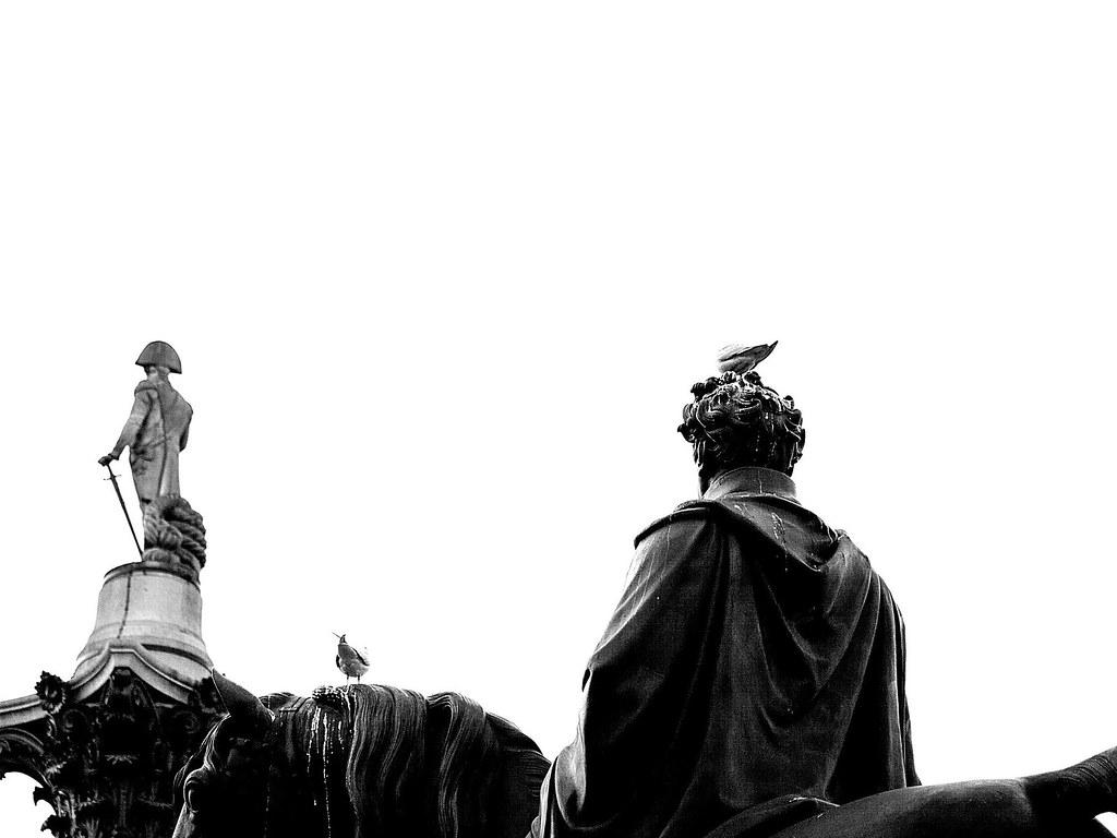 Gulls sitting on Equestrian statue of George IV, and Nelson's Column Trafalgar Square, London