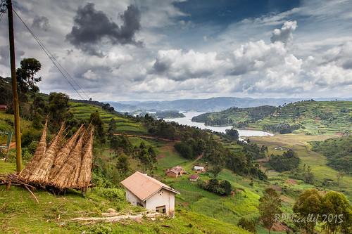Uganda 15