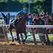 American Pharoah riden by jockey Victor Espinoza crossing the finish line to win the Triple Crown at Belmont on June 6, 2015 by diana_robinson