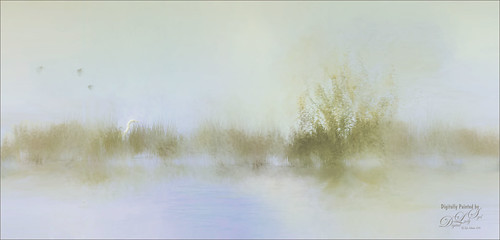 Painted image of Early Morning in the Swamp