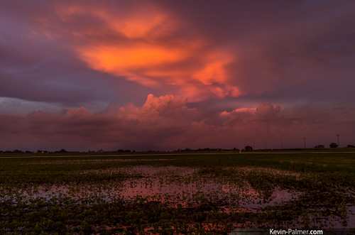 pink sunset red orange storm color reflection green water evening illinois colorful dusk vivid stormy farmland thunderstorm dwight fiery anvil flooded severe cumulonimbus soybeanfield tamron1750mmf28