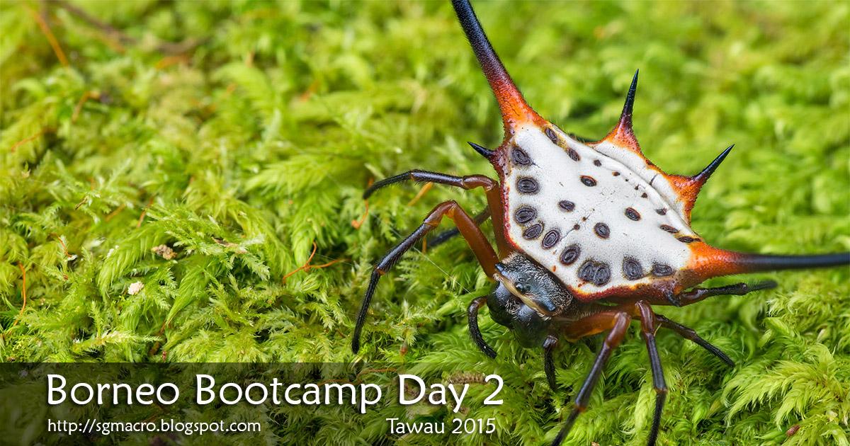 Borneo Bootcamp Tawau 2015 Day 2