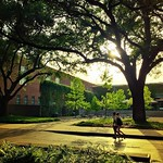 Now that Orientation is over, campus is quiet once again. We can't wait for everyone to come back in August! #Tulane #onlyattulane  Also- we wanna see your Tulane summer! Rocking Tulane gear on vacation? Tag us and you might just get a #ReGram