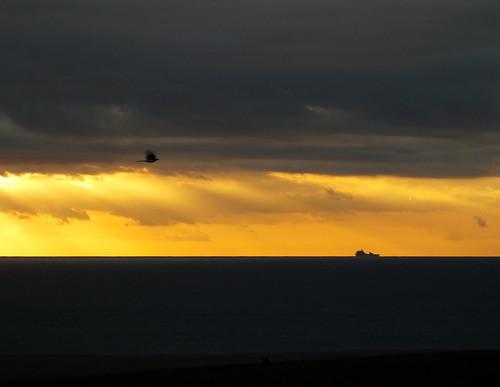 sunset ship bird sky sea clouds land lymebay dorset pirateslane wykeregis