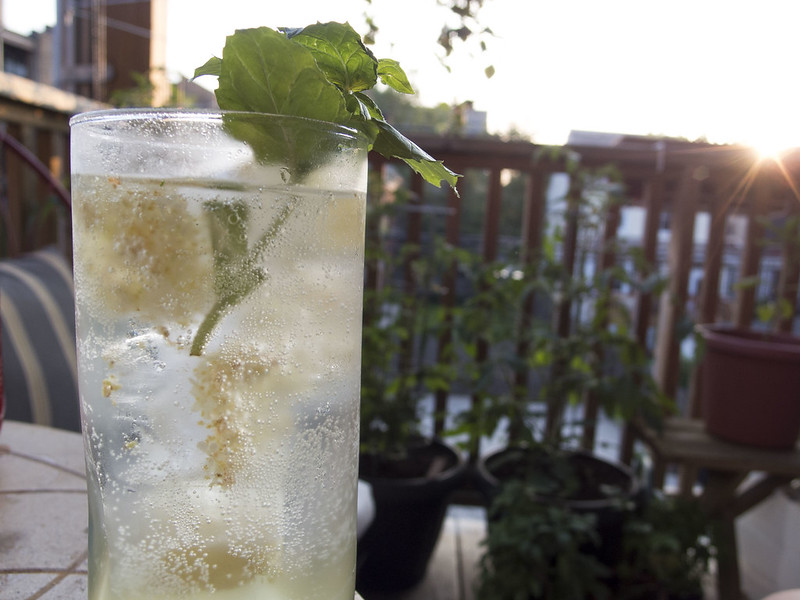 Elderflower soda