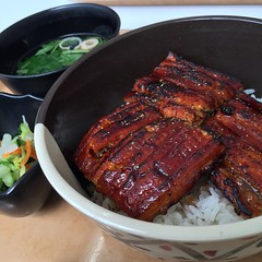 spare ribs(0.0), produce(0.0), unadon(1.0), ribs(1.0), unagi(1.0), pork ribs(1.0), sirloin steak(1.0), food(1.0), dish(1.0), cuisine(1.0),