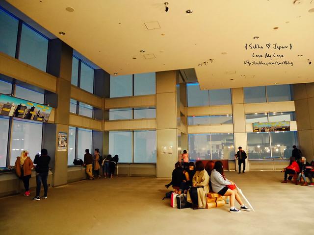 東京新宿都廳免費無料夜景45F (3)