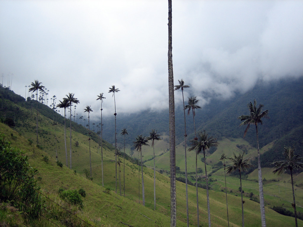 Colombia 2005