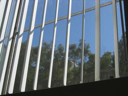 view, trees, blinds IMG_0761.JPG