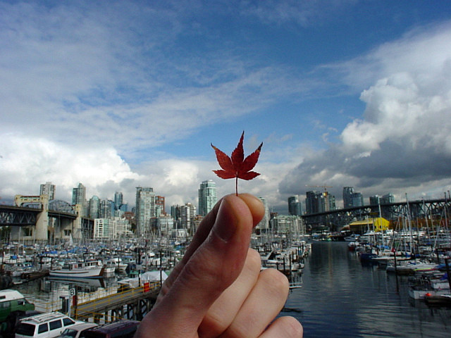 fall in Vancouver